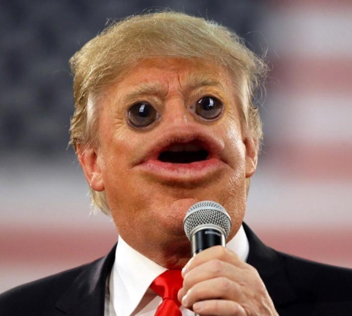 Мемы про трампа (3)