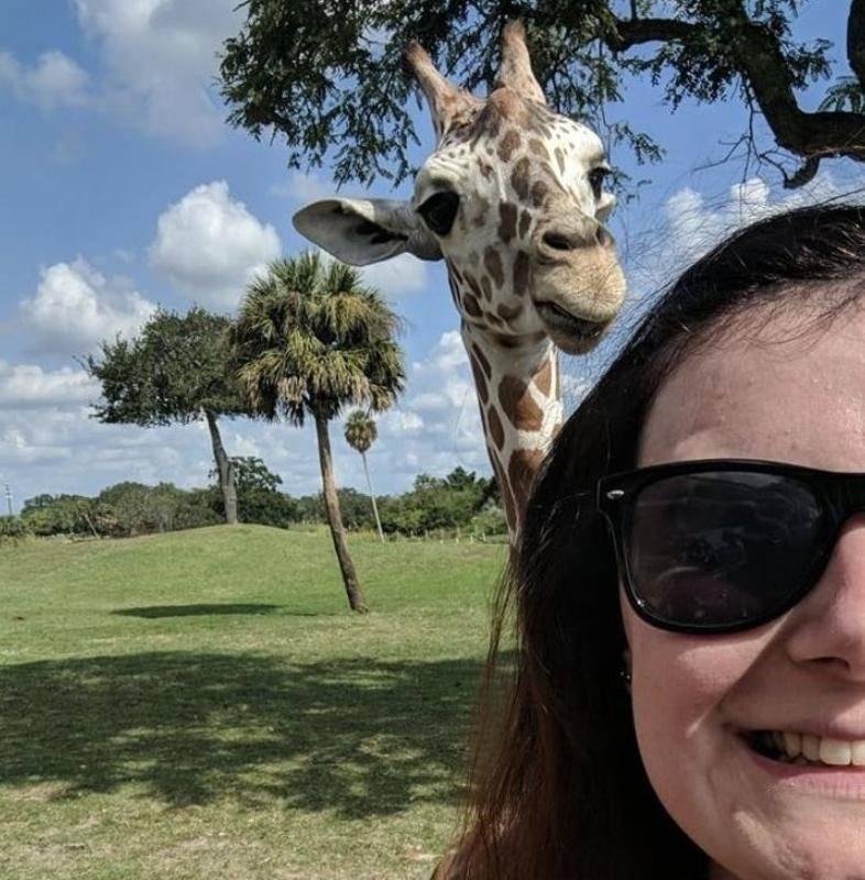 13. Селфи с детенышем жирафа