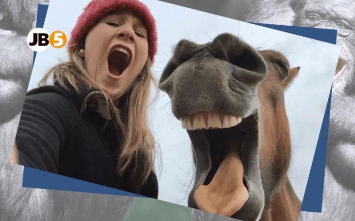 Лошадь ржёт - смешные животные (20)